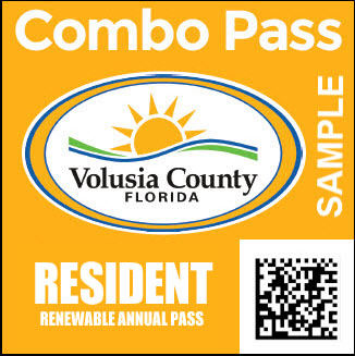 volusia county fl drivers license check
